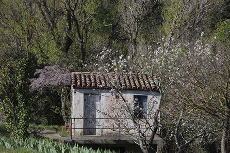 jardin encore le jardin dormait encore botanique jardins paysages