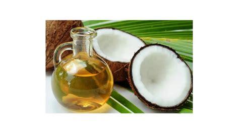 artikel cara membuat minyak kelapa murni cara membuat minyak kelapa youtube