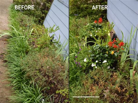container gardening soil got bad soil go with a container garden