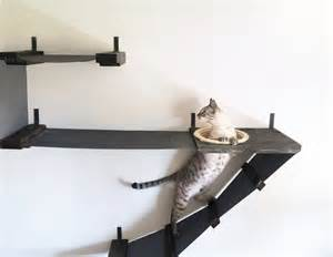 wall mounted shelves for cats 7 creative cat wall shelves to transform your home into a
