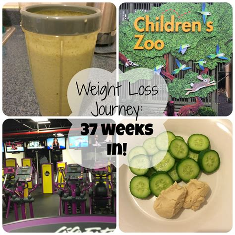 weight loss 37 weeks weight loss journey 37 weeks in time and