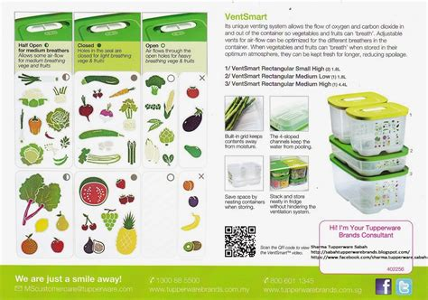 Tupperware Ventsmart tupperware brands sabah tupperware ventsmart system