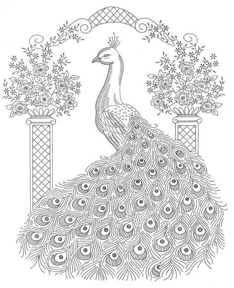 animal coloring pages peacock peacock coloring pages to download and print for free