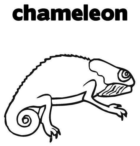 Chameleon Coloring Pages To Printable Chameleon Coloring Page