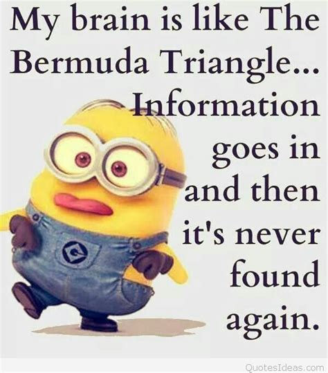 minions quotes images weekend minions quotes sayings images