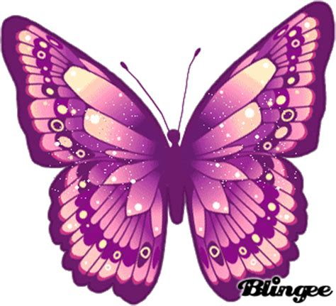 imagenes mariposas y libelulas movimiento mariposa picture 130202337 blingee com