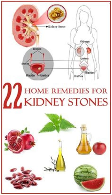 How To Detox Kidney Stones by 1000 Images About Kidney Cleanse Remedy On