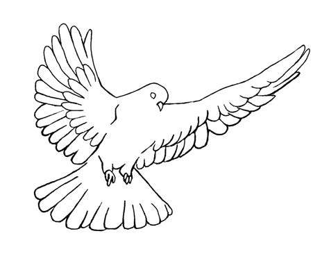 holy spirit pentecost coloring pages holy spirit dove symbol clipart panda free clipart images