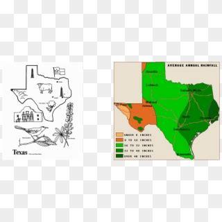 cowboy cattle drive cattle drive logo hd png
