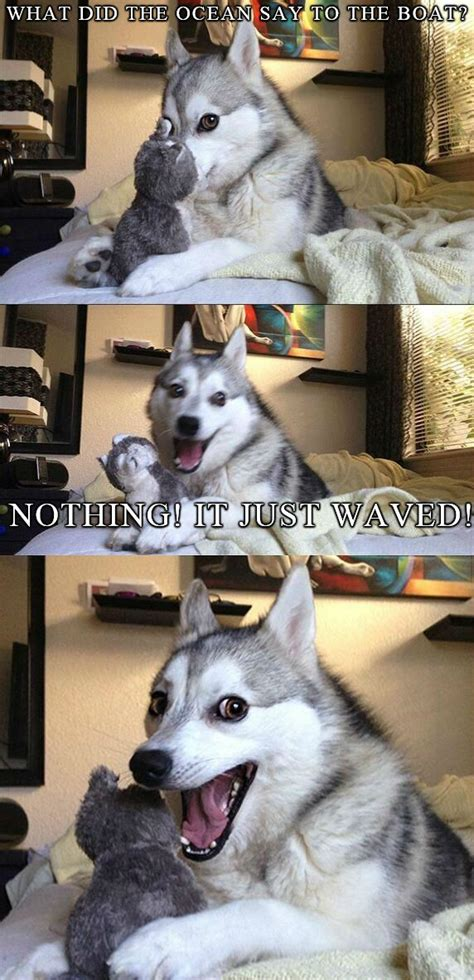 Dog Pun Meme - best of the bad pun dog meme 18 pics weknowmemes