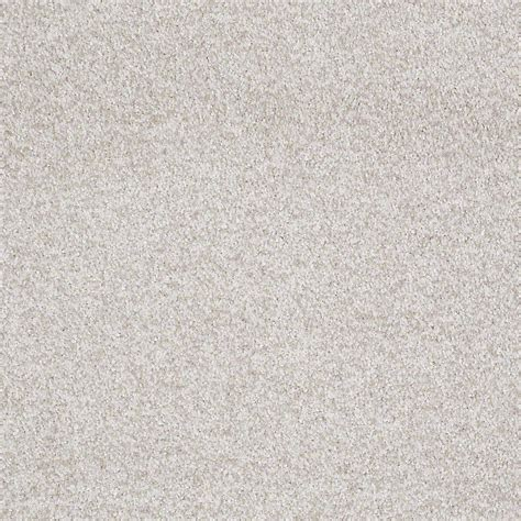 Home Decorators Carpet Home Decorators Collection Carpet Sle Opulence In Color 8 In X 8 In Sh