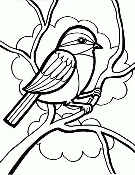 coloring pages cute birds bird coloring pages bestofcoloring com