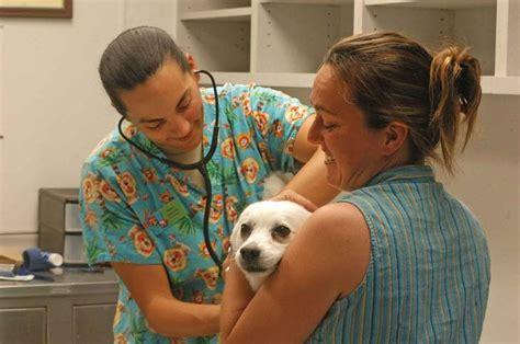 giving dogs ibuprofen can i give my ibuprofen warning herepup