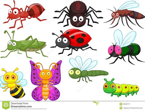 Insect Cartoon Collection Set Stock Vector - Illustration ... Insect Drawings Clip Art