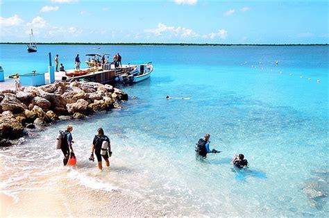 bonaire dive bonaire shore diving scuba diving resource