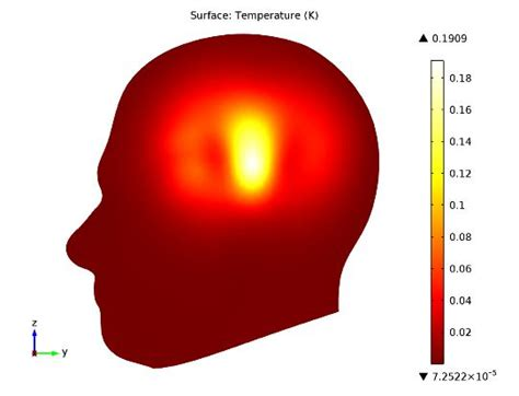 specific absorption rate sar   human brain comsol