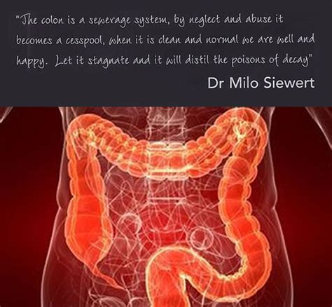 Detox Colonic Irrigation by Colonic Hydrotherapy And Options