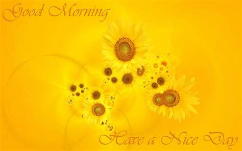 wallpaper free download good morning good morning wallpapers free download