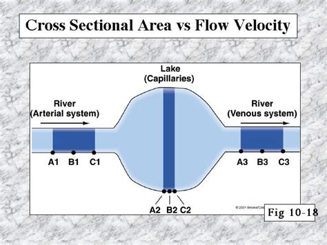 what is cross sectional area of a river cross sectional area vs flow velocity