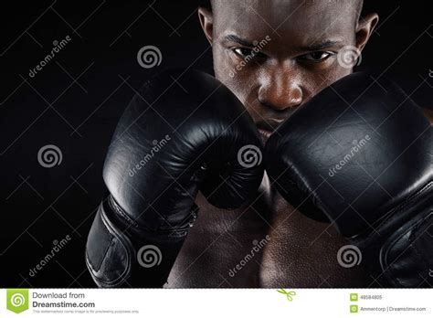 the longhaired boxer books south businessman stock photos images