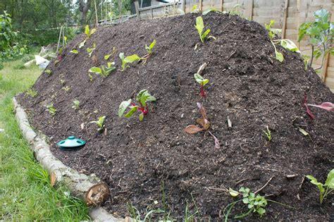 hugelkultur bed build a survival garden using hugelkultur shtf prepping central