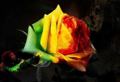 rastafari love images rasta love is jah love tattoos pinterest love is