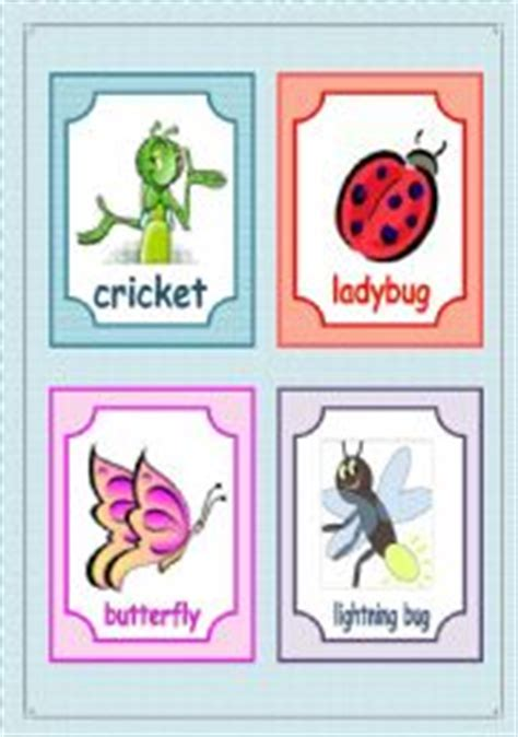 printable insect flash cards english teaching worksheets insects