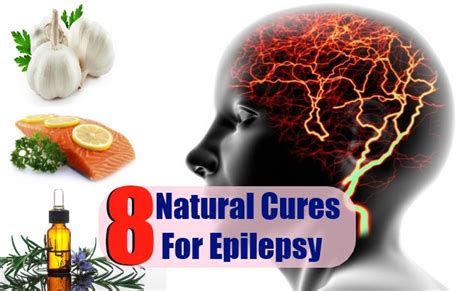 home remedies for seizures top 8 cures for epilepsy how to cure epilepsy naturally search herbal
