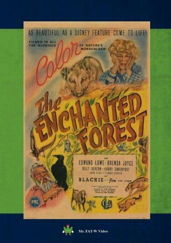 The Enchanted Forest Dvd R 1945 Directed By Lew Landers The Enchanted Cottage Dvd