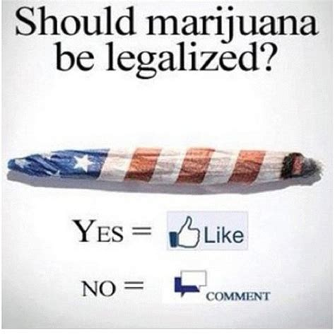 Why Marijuana Should Be Illegal Essay by College Essays College Application Essays Why Marijuana Should Be Illegal Essay