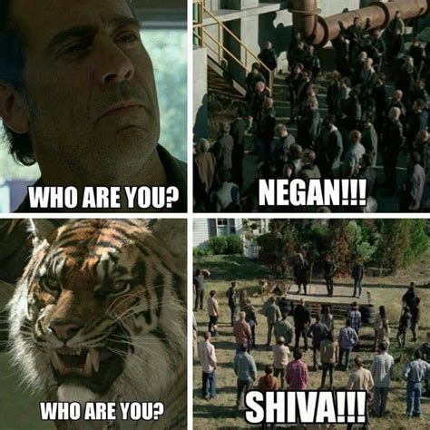Shiva Meme - 234 best images about the walking dead funny memes season