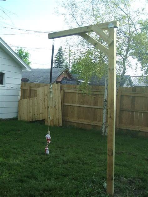pole for dogs your pole pinteres