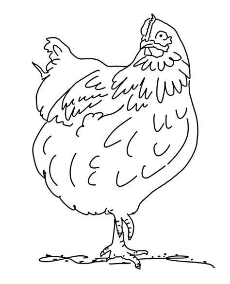 chicken coloring pages preschool coloring pages for march top coloring pages