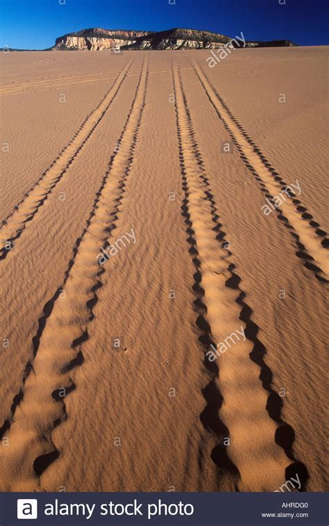 Sand Trax Sand Lander Road road vehicle tracks in sand coral pink sand dunes state park utah stockfoto lizenzfreies