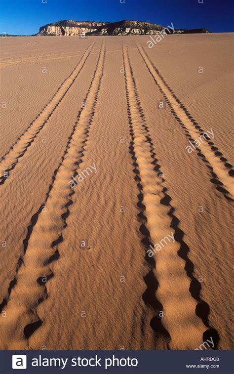 Sand Trax Sand Lander Road road vehicle tracks in sand coral pink sand dunes