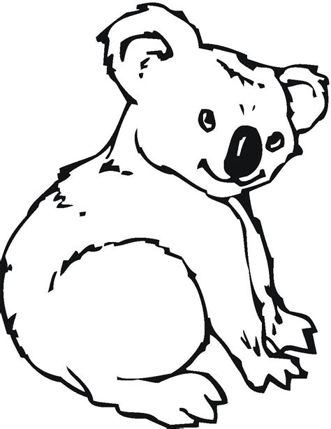 koala outline clipart best
