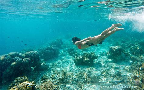 snorkeling  kanawa island flores indonesia