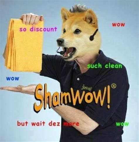 Doge Know Your Meme - shamwow doge know your meme