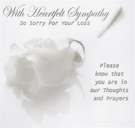 sorry for your loss sorry for your loss quote quote number 608967 picture quotes