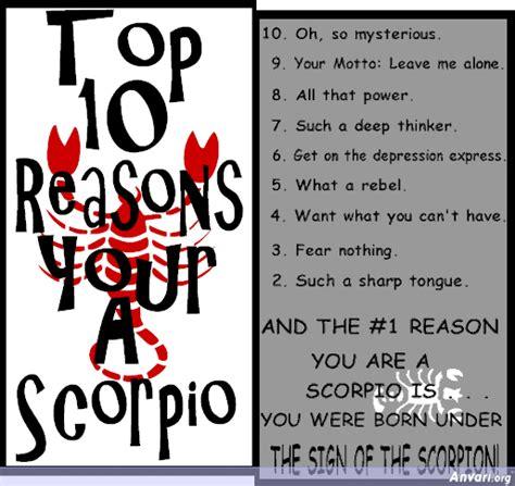 scorpio zodiac sign quotes quotesgram