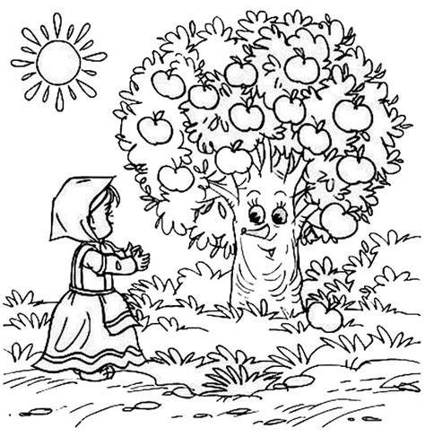 coloring page of a apple tree apple tree 46 nature printable coloring pages