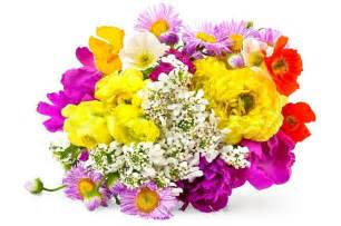 Poppy Flower Bouquet - bouquet of different flowers of white yellow red and