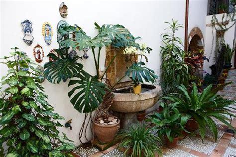 fuentes patio interior patio interior con fuente y plantas naturales fotograf 237 a