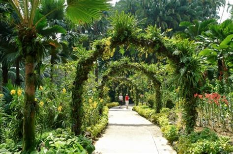 How To Go Botanic Garden Top 10 Things To Do In Singapore