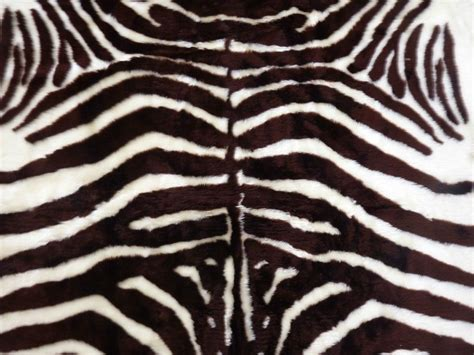 Faux Zebra Skin Rug by Faux Fur Zebra Hide Rug From 3 X 5 Brown White