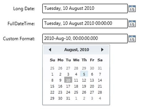 format date xaml free wpf controls masked input date time editor