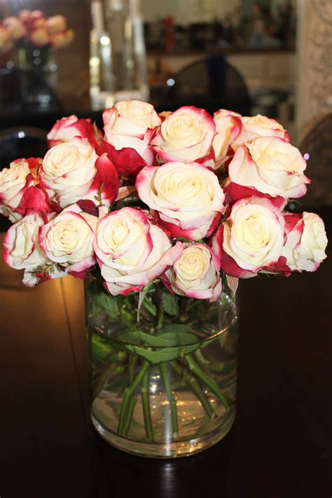Red Allure! - Seyie Design Fire And Ice Roses