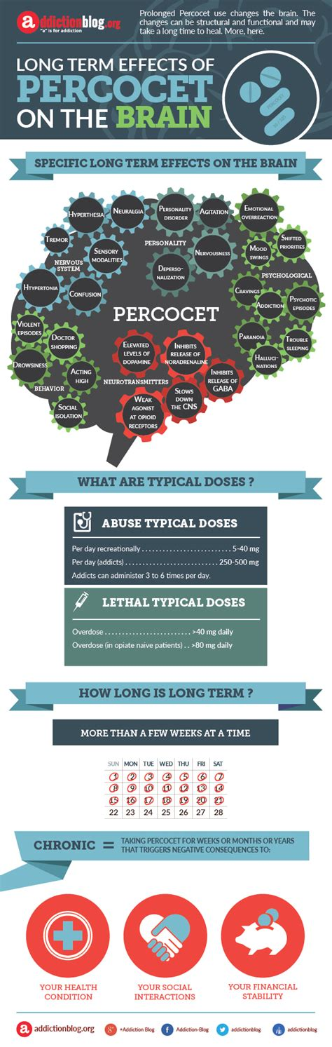 Percocet Detox Time by Effects On The Brain From Term Percocet Use Infographic