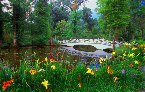 Magnolia Gardens On by Magnolia Gardens S C Photo Shirley Maranda Photos At