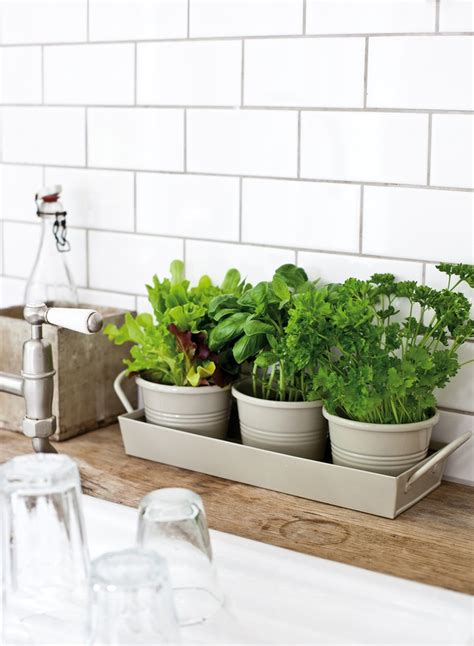 kitchen herb pots 25 awesome indoor garden planting projects to start in the